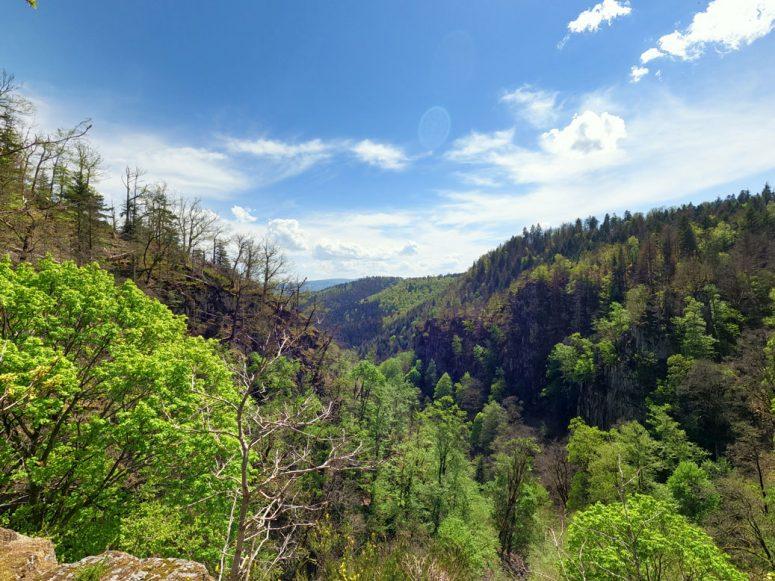 Forêt Cascade du Nideck
