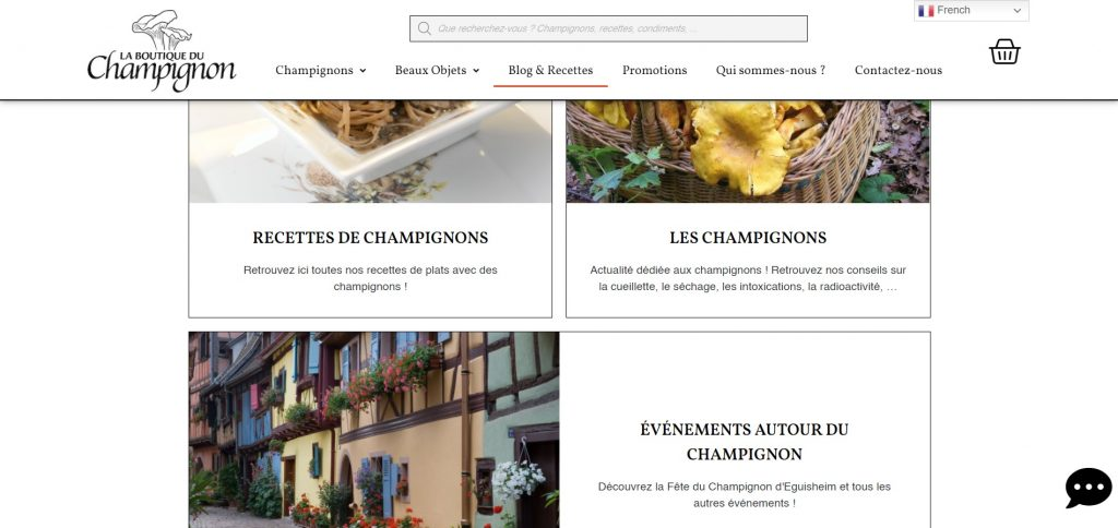 Site Web Blogs et Recettes La Boutique du Champignon